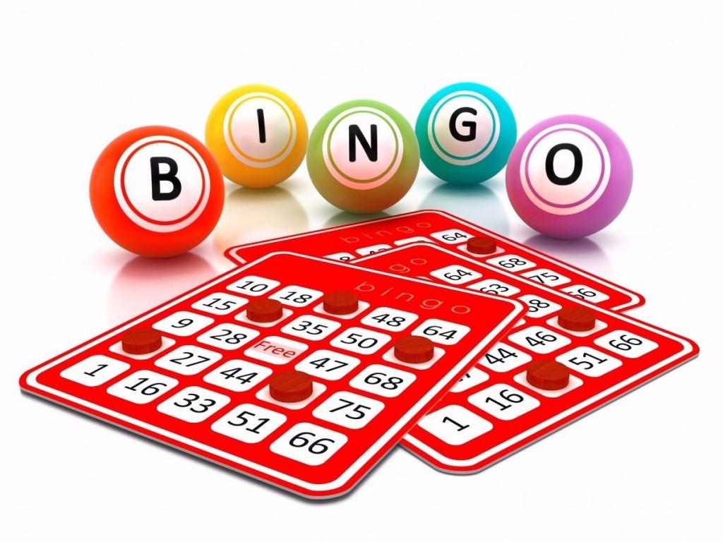 Bingo - Problemas con hiperactividad
