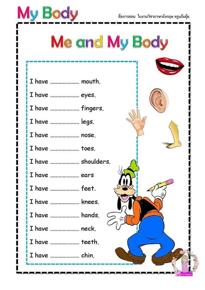 Partes del cuerpo en Inglés para niños 7