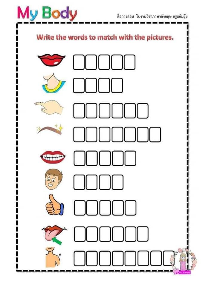 Partes del cuerpo en Inglés para niños 6