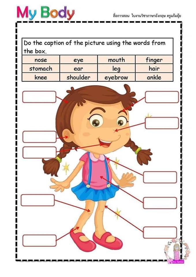 Partes del cuerpo en Inglés para niños 3